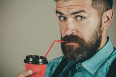 Good morning coffee. mature hipster drink coffee. full of energy. male with beard. brutal bearded man with take away. Coffee. Fresh coffee to continue the royalty free stock photography