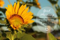 Good Morning Greetings. Morning inspirational motivational quote - I hope you wake up feeling positive, strong and happy.  With stock photos