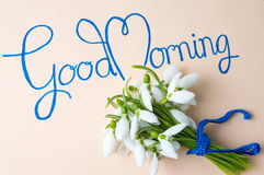 Good morning note with snowdrops bouquet. Good morning calligraphy note with snowdrops bouquet royalty free stock photos