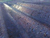 Good Morning. Spring water reflection close-up Royalty Free Stock Image