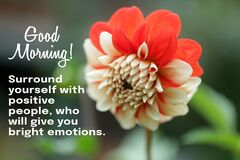 Free Good Morning. Surround Yourself With Positive People, Who Will Give You Wilth Bright Emotions. Morning Inspirational Words. Royalty Free Stock Image - 213524846