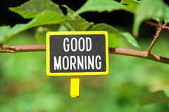 Good morning text on board. Good morning text written on yellow small chalkboard linked tree with clothespin on nature green background royalty free stock image