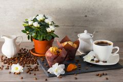 Good morning with two muffins, cup of aroma coffee, jug of cream to coffee and flowers of azalia on gray wooden. Good morning with two muffins, cup of aroma Stock Photo