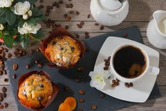 Good morning with two muffins, cup of aroma coffee, jug of cream to coffee and flowers of azalia on gray wooden. Good morning with two muffins, cup of aroma Stock Images