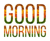 Word good morning written with leaves white isolated background, banner for printing, creative illustration of colored Royalty Free Stock Photography