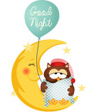 Good night owl holding a balloon Stock Images