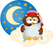 Good night owl Stock Photo