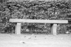 Stone Bench. Good old stone bench of olden days royalty free stock photo