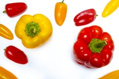Red and yellow peppers on white. Good quality close up photo of fresh various peppers served on some snow white surface. There`re lots of washed peppers on the Royalty Free Stock Photos