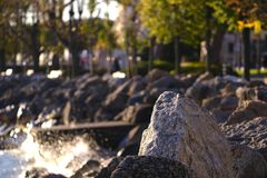 Coastline, rocks and water, trees. Good quality large size photo of a coastline: row of gray stones, boardering the coast; some blurred green trees an alleys are royalty free stock photos