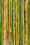 Good quality natural bamboo texture Royalty Free Stock Photography