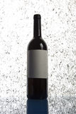 Good red wine. Simple big bottle of red wine on light background Stock Image