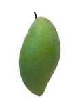 Good shaping green mango Stock Photography