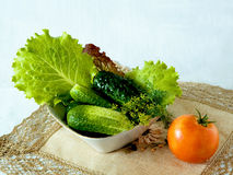 A good snack. A set of fresh vegetables in a bowl isolated on white background Stock Images