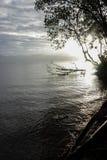 Good sunshine. Morning on the edge of the beach Stock Photos