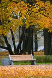 Good vacation spot. Lonely bench in park in autumn day Stock Images