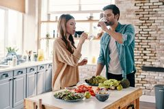 Good wine in a good company. Beautiful young couple cooking dinner and drinking wine while standing in the kitchen at home stock image