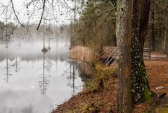 Goodale State Park Camden South Carolina Pond And Trail Royalty Free Stock Image