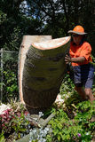 Goodbye to the bottle tree. KINGAROY, AUSTRALIA, MARCH 30, 2016: An unidentified man cuts down the stump of a Queensland Bottle Tree, Brachychiton rupestris Stock Photography