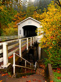 Goodpasture Bridge in the Fall. Goodpasture Covered Bridge over the McKenzie River near Vida, OR royalty free stock photography