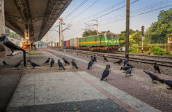 Goods train passes a deserted Indian railway station early morning. Royalty Free Stock Photography