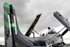 GOODWOOD, HET WESTEN SUSSEX/UK - 14 SEPTEMBER: Douglas Skyraider-park Stock Foto