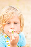 Goofy Little Blond Girl Smelling a Daisy Royalty Free Stock Photography