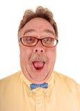 Goofy Mens Bowtie Royalty-vrije Stock Foto