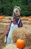 Goofy Scarecrow 2. A goofy scare crow in a children's maze made of hay bales and topped with pumpkins Stock Photo