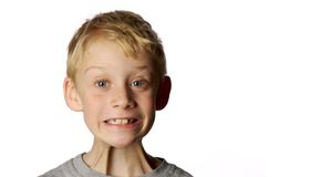 Goofy smiling boy. Young boy with goofy smile on white background stock images