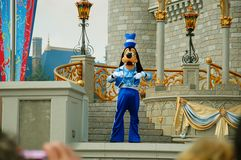 Goofy. On stage in Magic Kingdom during the Dreams Come True magical show in Disneyworld, Florida.  is a funny-animal cartoon character created in 1932 at Walt royalty free stock photo