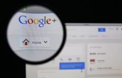 Google+ Stock Foto