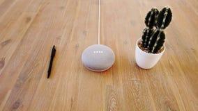 Google hem- kortkort - Mini Smart Home Voice Assistant kontrollerad grej som reagerar för att befalla Penna och kaktus arkivfilmer