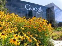 Google-Logo mit Blumen Lizenzfreie Stockfotos