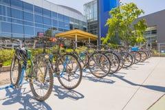 Google va in bicicletta la città universitaria Immagini Stock