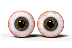 Two realistic human eyes with brown iris, isolated on white background 3d illustration. Googly eye balls isolated on white ground with shadows Royalty Free Stock Photos