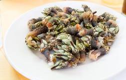 Goose barnacle Stock Image