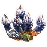 Goose barnacles, pollicipes polymerus, leaf barnacle isolated, watercolor illustration Royalty Free Stock Photo