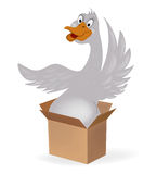 Goose in a box Royalty Free Stock Photography