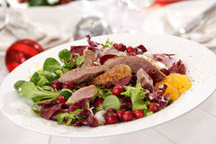 Goose breast on lamb's lettuce, cranberries, orange filets Royalty Free Stock Image