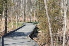 Goose Creek Trail Royalty Free Stock Photos