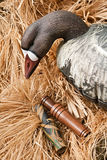 Goose decoy with stuffed and calls Stock Image