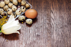 A goose egg, hen egg and a quail egg on a wooden background. Royalty Free Stock Photo