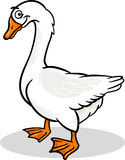 Goose farm bird animal cartoon illustration Stock Image