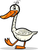 Goose farm bird cartoon illustration Stock Photos