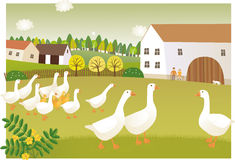 Goose farm Royalty Free Stock Image