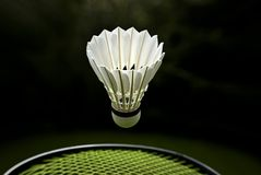 Goose feather badminton Royalty Free Stock Images