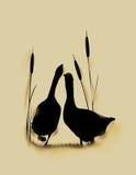 Goose love card. Romantic wildlife background with wild gooses couple Stock Image