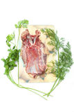 Goose meat with green Stock Photography
