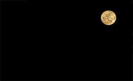 Goose Moon II Stock Image